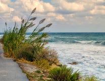 Windiger Tag in dem Meer Stockfoto