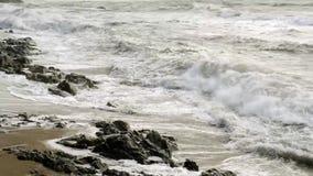 Windiger Tag am Strandufer stock footage