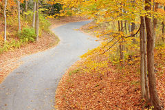 Winding alley in fall stock images