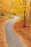 Winding alley in fall royalty free stock photos