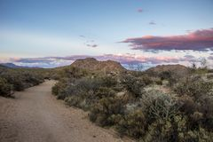 Winding Ariozna hiking trail with high clouds in Mcdowell Mountains. Winding hiking trail in Browns ranch trail with high clouds  near Mcdowell Mountains in royalty free stock image