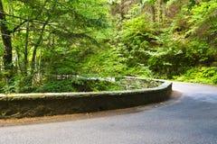 Winding Asphalt Road Royalty Free Stock Images