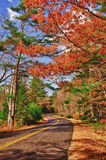 Winding autumn road Royalty Free Stock Photos