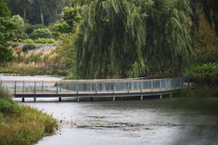 Winding Bridge across river. With Willow Tree and Forest in Background Royalty Free Stock Photo