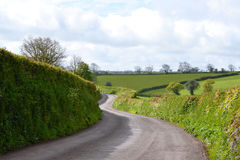 Winding Country Hedgerow road Stock Photos