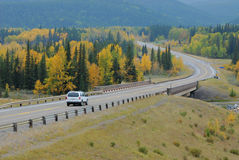 Winding country road. In the elbow river valley, alberta, canada Royalty Free Stock Image