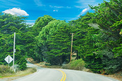Winding country road in California Royalty Free Stock Photo