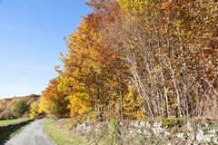 Winding country road in Creuse France with colorful auatumn foli Royalty Free Stock Image