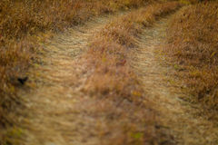 Winding country road. Winding dirt road turns uphill in country royalty free stock images