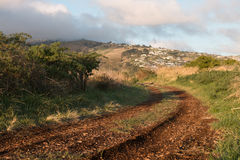 Winding country road in the early misty morning Stock Photography