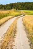 Winding country road through fields of wheat and clover Stock Images