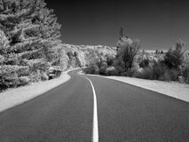 Winding country road in infrared Stock Image