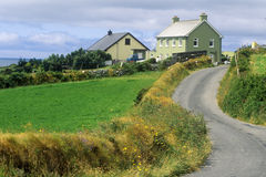 Winding country road in West Cork, Ireland Royalty Free Stock Photo