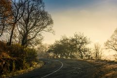 Winding countryside road in late autumn fog. Dangerous turnaround on serpentine in mountains Stock Photos