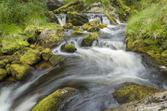 Winding creek. Creek winding through mossy rocks royalty free stock image