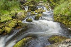 Winding creek. Creek winding through mossy rocks Royalty Free Stock Image