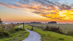 Winding cycling track through Dutch Polder. Landscape under beautiful sunset Stock Photos