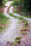 Winding dirt road Royalty Free Stock Image