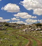 Winding dirt road. And cloudscape Royalty Free Stock Photos