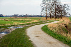 Winding dirt road in a rural landscape Royalty Free Stock Image