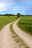 Winding dirt road in summer Royalty Free Stock Photo
