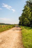 Winding dirt road between trees and grassland with a fence made Stock Image