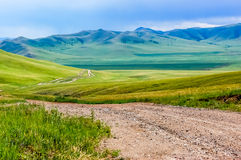 Winding dirt track in Mongolian steppe Stock Images
