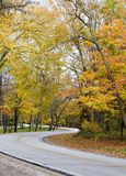 Winding Fall Road Royalty Free Stock Image