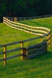 Winding Fence In flower filled meadow