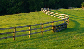 Winding Fence In Meadow. A long wooden fence winds through a grass filled farm field Royalty Free Stock Image