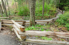 Winding fenced trail. Wood fence along a winding hiking trail in Thetis lake park, vancouver island, british columbia Royalty Free Stock Photography
