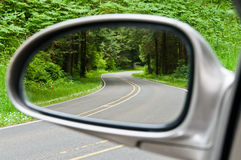 Winding Forest Road in Sideview Mirror Stock Photos