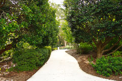 Winding garden pathway, trees, plants. Garden footpath surrounded by lush trees and plants Stock Image