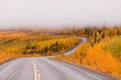 Winding golden fall taiga road Yukon Canada Stock Image