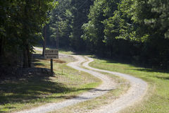 Winding gravel road through lush green trees. Stock Photography