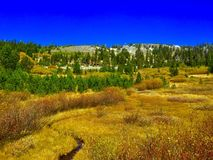 The winding meadow Royalty Free Stock Photography