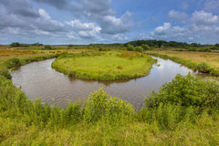 Winding meandering lowland river Royalty Free Stock Image
