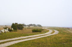 Winding misty road Royalty Free Stock Image