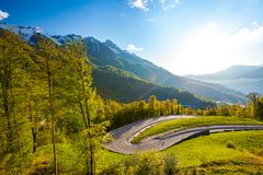 Summer spring forest mountain landscape, Sochi Russia. Royalty Free Stock Image