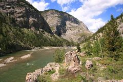Winding mountain river; mountains, trees; summer Royalty Free Stock Photo