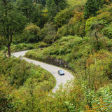 Winding mountain road in autumn forest Stock Photos