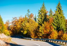 Winding mountain road in autumn forest. Lovely nature scenery with colorful foliage. travel europe by car concept Royalty Free Stock Photo