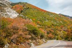 Winding Mountain Road in Autumn Stock Photos