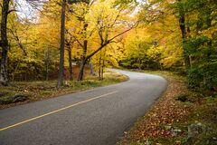 Curve along a steep mountain road running through a deciduous forest at the peak of fall foliage