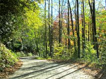Winding mountain road in the fall Royalty Free Stock Image