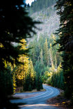 Winding mountain road. Stock Images