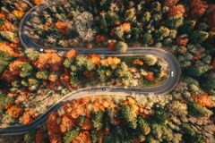 Winding mountain road trough the forest in the autumn with cars. Passing on the road stock images