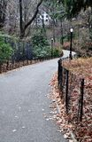 Winding Path in Central Park Royalty Free Stock Image