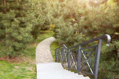 Winding path through the landscaped summer park. Green park outdoor Royalty Free Stock Photos