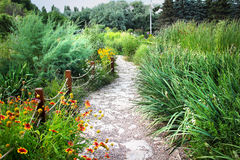 Winding path in lush green park Stock Photography